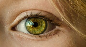 Oftalmologia Clínica - D'Olhos Hospital Dia
